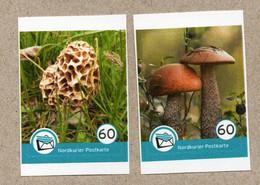BRD - Privatpost - Nordkurier -   2 Werte -  Pilze Mushrooms Champignons Hongos - Mushrooms