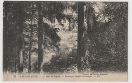 DEPT 10 : édit. Des Galeries Modernes N° 32 : Bar Sur Aube Le Bois De Sapins , Montagne Sainte Germaine - Arcis Sur Aube