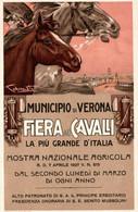 CPA - VERONA - Fiera Di Cavalli - P. CODOGNATO - Commemorativa, Commémoration - Cavalli, Chevaux - NV - PU743 - Advertising