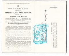 DP Marie Sylvie Van Assche ° Lebbeke 1867 † 1950 X Jan Haems // De Geest Uyttersprot - Santini