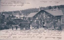 Bienne - Mâcolin, Gare Du Funiculaire, Calèche De L'Hôtel Macolin, Attelage (41) - BE Berne