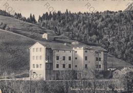 """CARTOLINA  ZAMBLA M.1197,BERGAMO,LOMBARDIA,COLONIA """"DON SEGHEZZI""""BELLA ITALIA,RELIGIONE,IMPERO ROMANO,VIAGGIATA 1961 - Bergamo"""