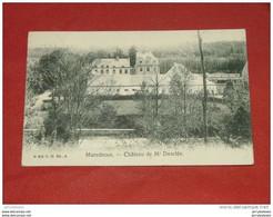 MAREDSOUS  -  Château De Mr Desclée   -   1908 - Anhée