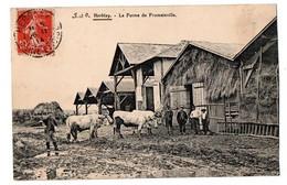 HERBLAY LA FERME DE FROMAINVILLE ANIMEE - Herblay