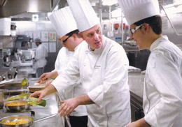 A9185- COOKS CHEFS PROFESSION POSTCARD - Andere