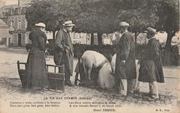 CARTE POSTALE ORIGINALE ANCIENNE : LA FOIRE AUX BESTIAUX VENTE DE COCHONS LA VIE AUX CHAMPS A VIRE  ANIMEE CALVADOS (14) - Fiere