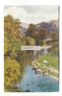 A R Quinton Postcard No. 1478 - A Bend In The Wharfe At Bolton Abbey - Quinton, AR