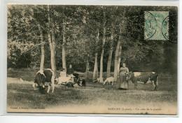 45 DOUCHY Plutot Rare Un Coin De La Prairie Paysannes Gardiennes Vaches Chevre Blanche écrite Timb 1906    D02 2021 - Sonstige Gemeinden