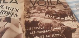 VOILA 37/HEMINGWAY TAUROMACHIE/DIVORCES SUR MESURE/EXPOSITION PHENOMENES - 1900 - 1949