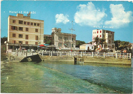 R4286 Santa Marinella (Roma) - Lungomare Capo Linaro - Hotel Le Najadi E Hotel Palme / Viaggiata 1970 - Other Cities