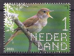 Nederland - Beleef De Natuur - 14 Juni 2021 - Duin En Kruidberg - Nachtegaal/nightingale/Nachtigall/Rossignol - MNH - Sperlingsvögel & Singvögel