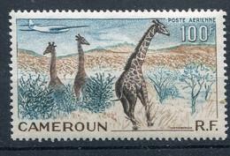 Cameroun      PA  47 ** - Airmail