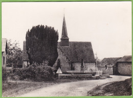 Belle CPSM RAVIGNY L'Eglise 53 Mayenne - Autres Communes