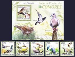 Comoros 2009 MNH MS+5v, Pigeons, Birds - Columbiformes