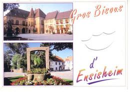 Ensisheim ( Alsace) 2 Vues: La Régence, Le Puits - Non Classés