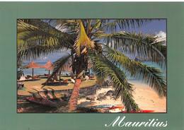 ILE MAURICE     37-0373 - Mauricio