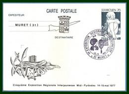 """Entier Cp Repiqué MURET 1977 BT Bureau Temporaire 5é Expo Interjeunes Avion """"Concorde"""" - Overprinter Postcards (before 1995)"""