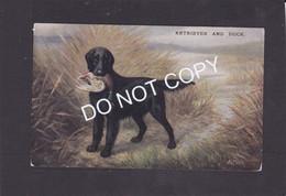 Dog Card -   Retriever And Duck. - Hunde