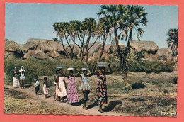 L ' AFRIQUE EN COULEURS - Sur Le Chemin De La Fontaine - Unclassified