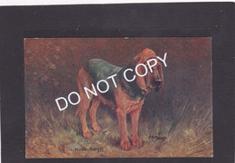 Dog Card -  Bloodhound.    Spratts Advertising Card.  Ch Mirabels Mischief.   FT Daws. - Hunde