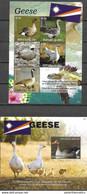 MARSHALL ISLANDS, 2020, MNH, BIRDS, GEESE, TURTLES, FISH, SHEETLET+S/SHEET - Geese