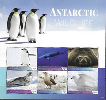 MARSHALL ISLANDS, 2020, MNH, ANTARCTIC FAUNA, BIRDS, PENGUINS, WHALES, SEALS, SHEETLET - Other