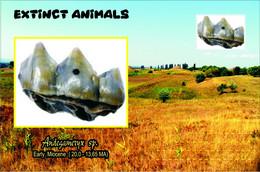 Vignettes De Fantaisie, Extinct Animals ,  Ruminantia, Andegameryx Sp. - Fantasie Vignetten
