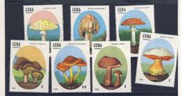 CUBA 1988 CHAMPIGNONS  YVERT N°2823/29  NEUF MNH** - Mushrooms