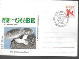 SLOVENIE Lettre PAP 1995 Champignons - Mushrooms