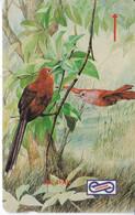 TARJETA DE MALASIA DE UN PAJARO - BIRD - SELAYAK - Unclassified