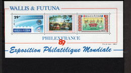 TIMBRE WALLIS&FUTUNA. ANNEE 1989 - Blocks & Sheetlets