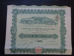 FRANCE - PARIS 1911 - CIE DES MINERAIS DE FRANCE - ACTION DE 100 FRS - PEU COURANT - Sin Clasificación