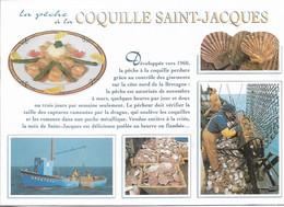 POISSONS & CRUSTACÉS - LA PECHE À LA COQUILLAGE SAINT JACQUES - 5 PETITES VUES - CPM - VIERGE - - Poissons Et Crustacés