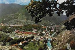 06 Alpes Maritimes - SAINT DALMAS De TENDE - Paysages De France - Altitude 690 M - Other Municipalities