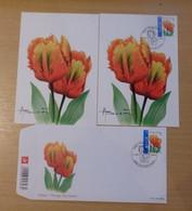 A.Buzin 3786 Tulp Orange Gestempeld Petit-Rechain FDC, Blanco En Gestempelde Kaart Zie Foto Spotprijs - 1985-.. Vogels (Buzin)