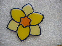 Pin's Embleme De L'institut Curie - Associazioni
