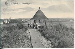 Coq Sur Mer Le Champignon - De Haan
