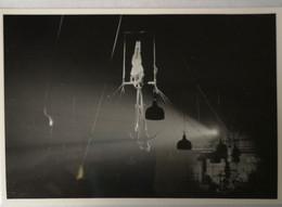 Circus - Cirque // Carte Photo - RPPC To Identify, Prob. Belgie No. 4. //Trapeze High Air Act.19?? - Circus