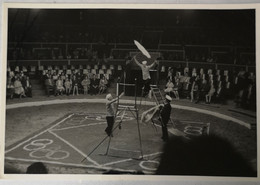 Circus - Cirque // Carte Photo - RPPC To Identify, Prob. Belgie No. 5. // High Wire Act.19?? - Circus