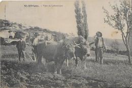 ST. AFFRIQUE : Type De Laboureurs  ( 1910) - Saint Affrique