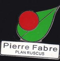 71491-  Pin's-Pierre Fabre Est Un Groupe Pharmaceutique Français,Castres. - Medici
