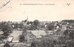 18-CHATEAUMEILLANT-N°360-E/0203 - Châteaumeillant