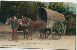 40 - LANDES - Attelage De Mules - Lou Bros - Unclassified