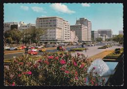 Manila. *Roxas Blvd And Flowers* Nueva. - Filippine