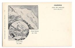 (30833-74) Chamonix - Plan Des Aiguilles - Chamonix-Mont-Blanc