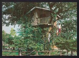 Zamboanga. Pasonanca. *Tree House* Nueva. - Filippine