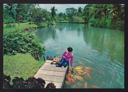 Mindanao. Davao. *Iñigo Farm* Nueva. - Filippine
