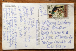 SIERRA LEONE - MARKET - IL MERCATO  -  POST CARD Par Avion  With 30 C.  To GERMANY - 12/11/83 - TEMATICA UCCELLI - Mundo