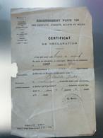 1903 Recensement Pour Des Chevaux Juments Mulets Et Mules Nancy Voiturier - 1900 – 1949