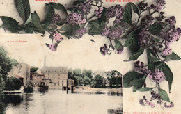 VITRY EN PERTHOIS - Les Grands Moulins - Souvenir - Other Municipalities